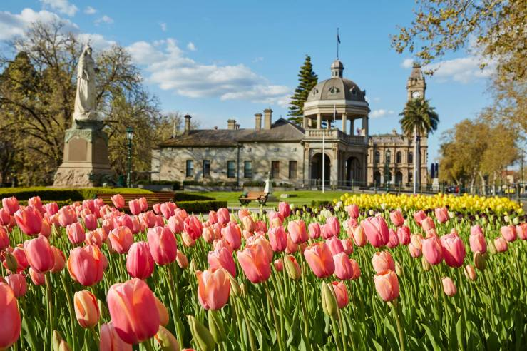 bendigo-tulips-regional-events-guide